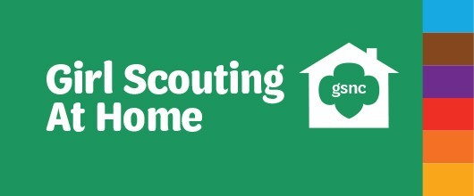 Girl Scouting at Home_feature 530x220